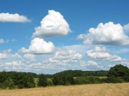 Figure 2 Cumulus clouds of little vertical development.jpg